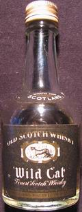 Wild Cat