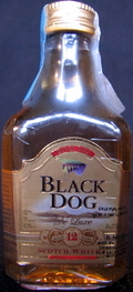 Black Dog